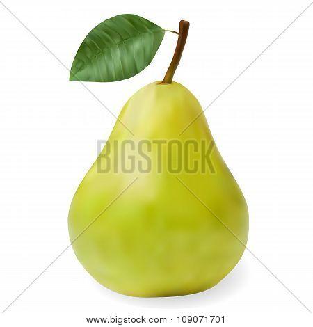 Green Ripe Pear With A Leaf