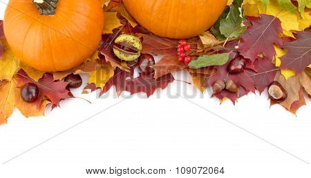 Pumpkins With Autumn Leaves For Thanksgiving Day On White View F