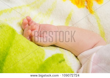 Small Hand The Sleeping Baby