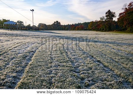 Morning Frost On Field