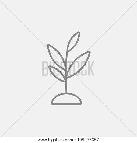 Sprout line icon for web, mobile and infographics. Vector dark grey icon isolated on light grey background.