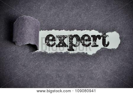 Expert  Word Under Torn Black Sugar Paper