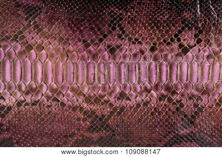 Purple python leather
