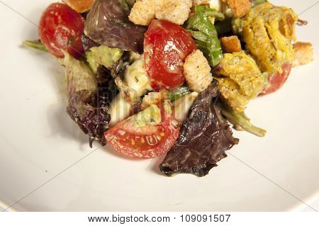 Salad in Studio