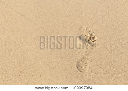 Foot Prints On Sand At The Beach In The Afternoon