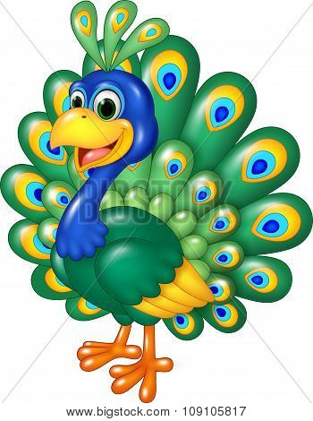 Cartoon funny peacock isolated on white background