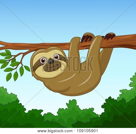 Cartoon happy sloth hanging on the tree
