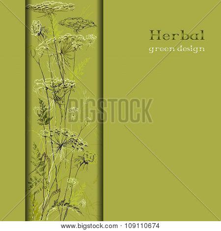 Hand drawn green herbs. Vertical border design background.