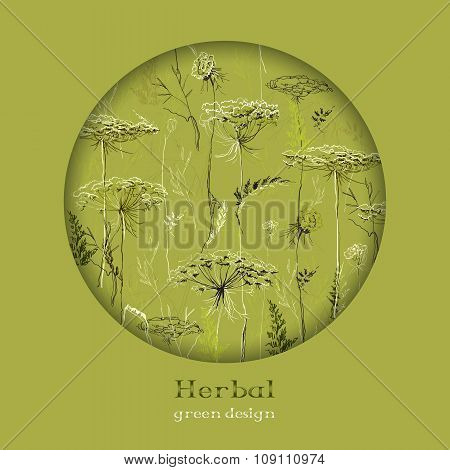 Hand drawn green herbs. Circle design background. Text place.