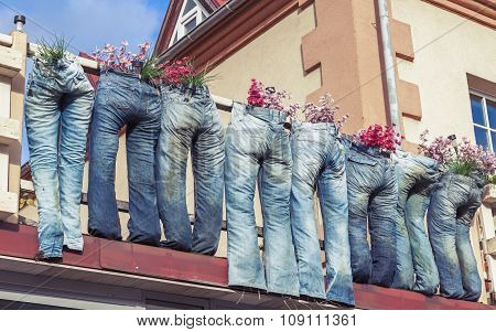 Group Of Blue Jeans Used As Flower Pots