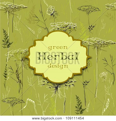 Hand drawn green herbs seamless pattern background. Vintage label.