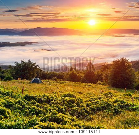 Fantastic foggy mountains glowing by sunlight in the morning. Dramatic and picturesque scene. Location Carpathian, Ukraine, Europe. Beauty world. Instagram toning. Warm toning effect.