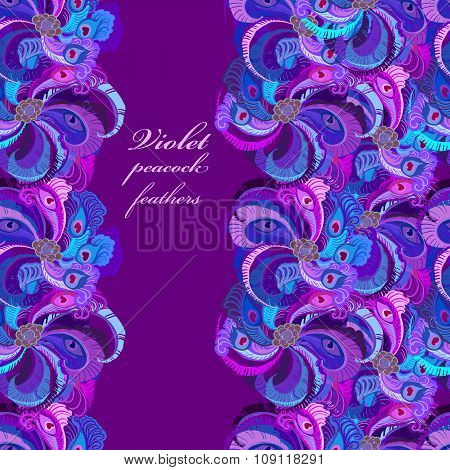 Violet, lilac and blue peacock feathers. Vertical border dark design.