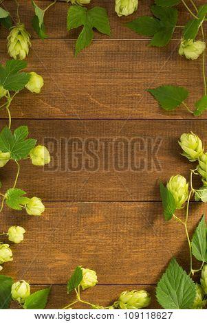 hop cones on wooden background