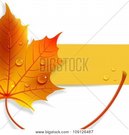 Banner With A Maple Leaf
