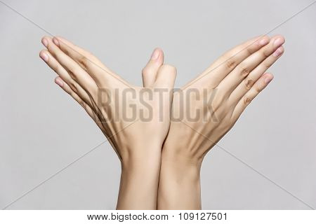 Woman's Hands Makes Bird Shape