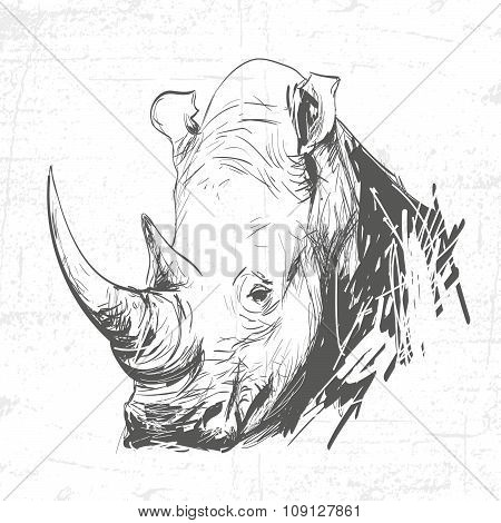 Head Rhino In The Art Of Engraving. See Also Other Animals.