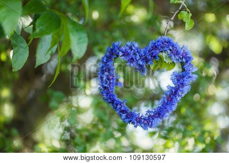 Heart Shape Made Of Flowers (cornflowers) With Natural Boke Through Summer Foliage