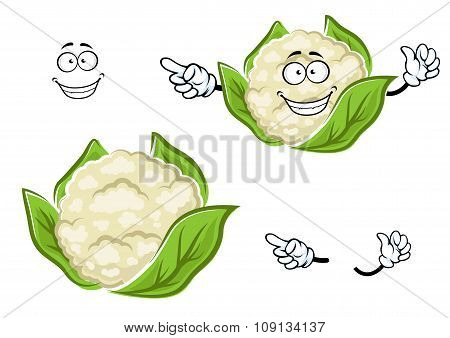 Ripe cartoon cauliflower vegetable with leaves