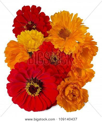 A Bouquet Of Bright Flowers Calendula And Zinnias