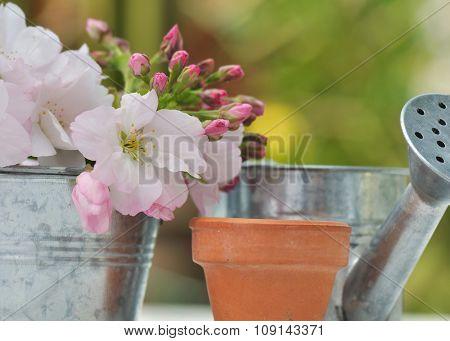 Floral Gardening