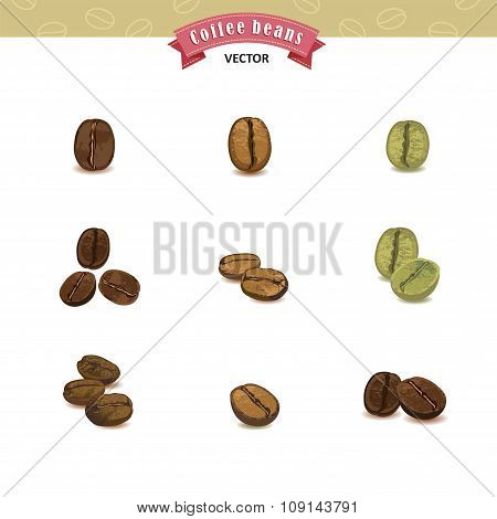 Collection Of Coffee Beans Isolated On White Background, Vector Illustrations.