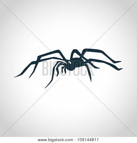 Spider black silhouette