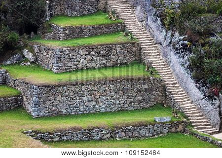 terraces and stairs to Machu Picchu