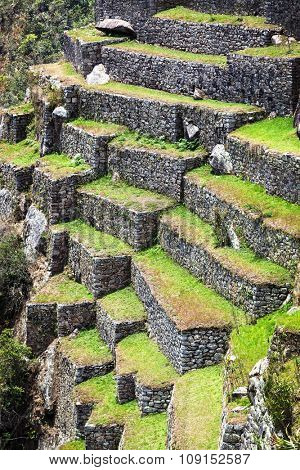 terraces on the mountain of Machu Picchu