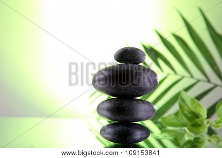 Spa stones and green palm branch on light green background