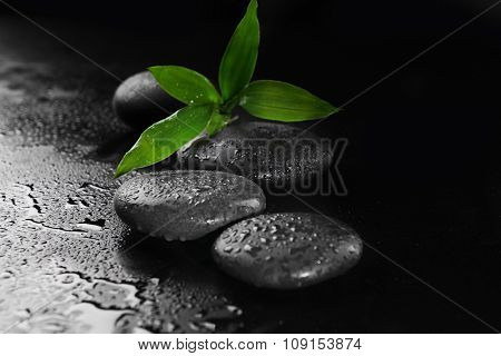 Pebbles with bamboo leaf on black background