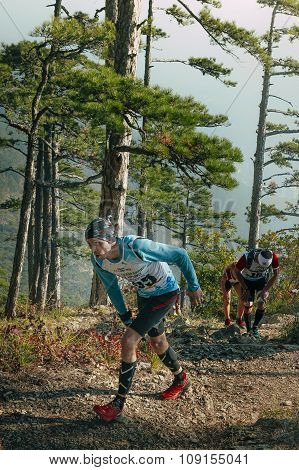 group of young runners run uphill in a pine forest