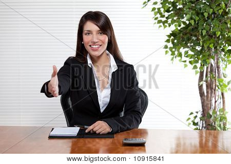 Handshake Business Woman