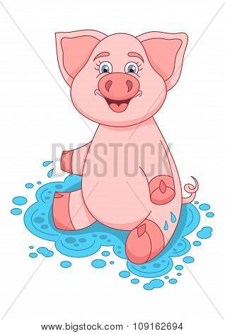 Vector illustration of cute pig on water puddle