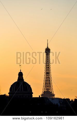 The Eiffel Tower and the French Institute at sunset in Paris, France