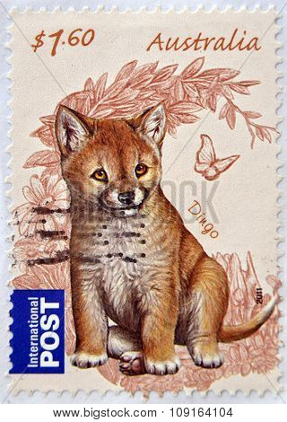 AUSTRALIA - CIRCA 2011: Postage stamp printed in Australia shows the Dingo (Canis lupus dingo)