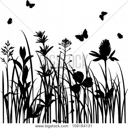 vector silhouettes of wild herbs and flowers