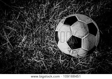 B&W football on grass background