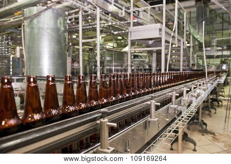 Beer bottles on the conveyor belt