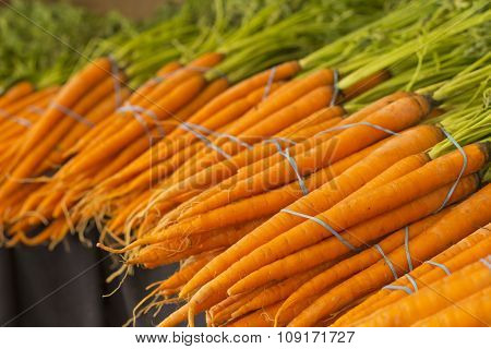 Bunches of organic carrots with green stems attached grown locally