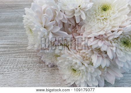 Bouquet of white and pink chrysanthemums close up