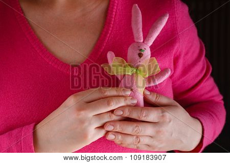 Female In Pink Give Soft Toy