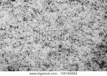Brilliant Snow Or Hoarfrost Of Monochrome Tone