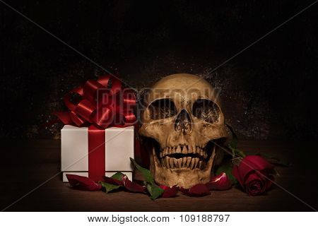 Still Life Painting Photography With Human Skull, Present, Rose