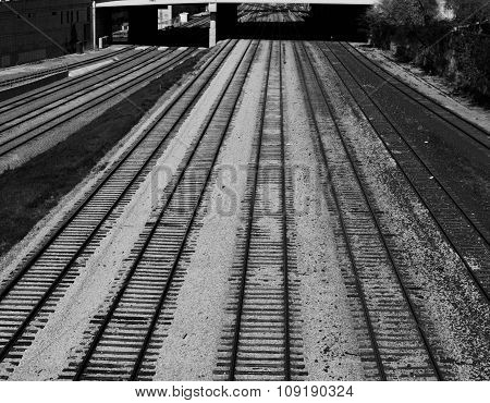 Black And White Photo Of The Several Railroad Ways