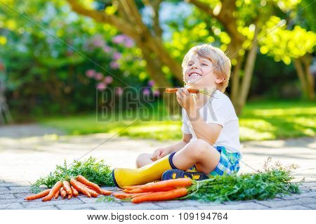 Adorable little child with carrots in domestic garden