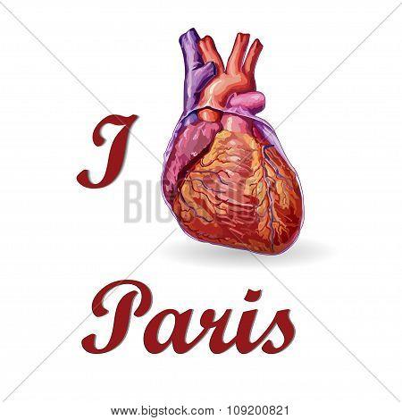 I Love Paris . Human Heart Vector