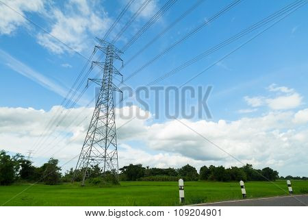 High-voltage Tower In A Rice Field