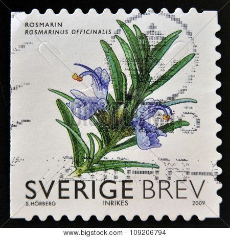 SWEDEN - CIRCA 2009: stamp printed in Sweden shows Rosemary circa 2009