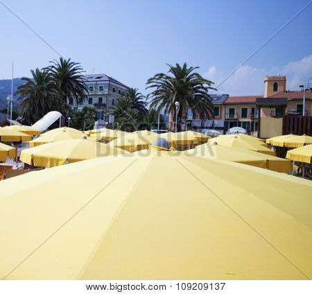Umbrellas Under Blue Sky